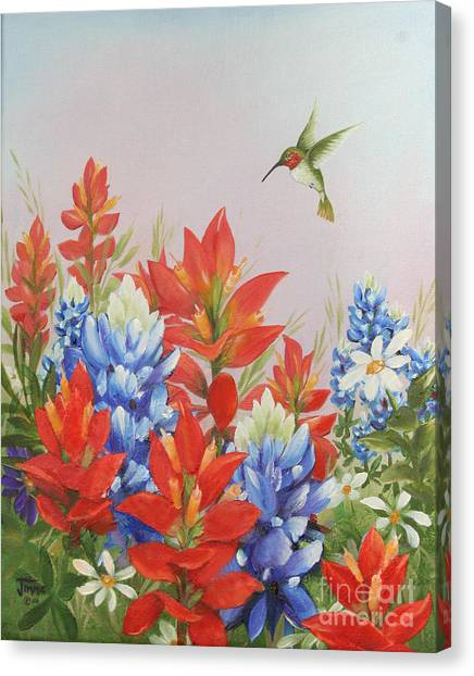 Humming Bird In Wildflowers Canvas Print