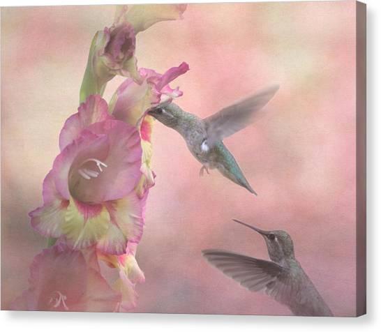 Gladiolas Canvas Print - Humming Gladiola by Angie Vogel