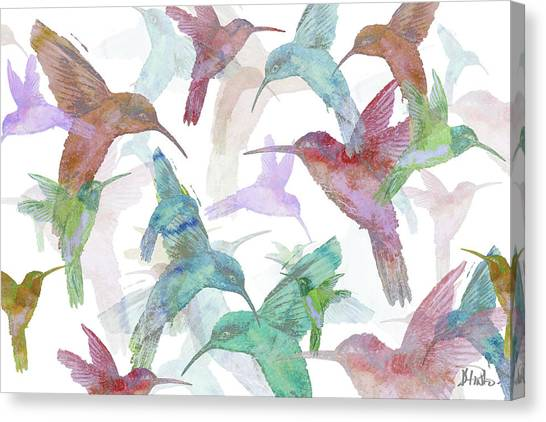 Colorful On Canvas Print - Hummingbird Dance On White by Patricia Pinto