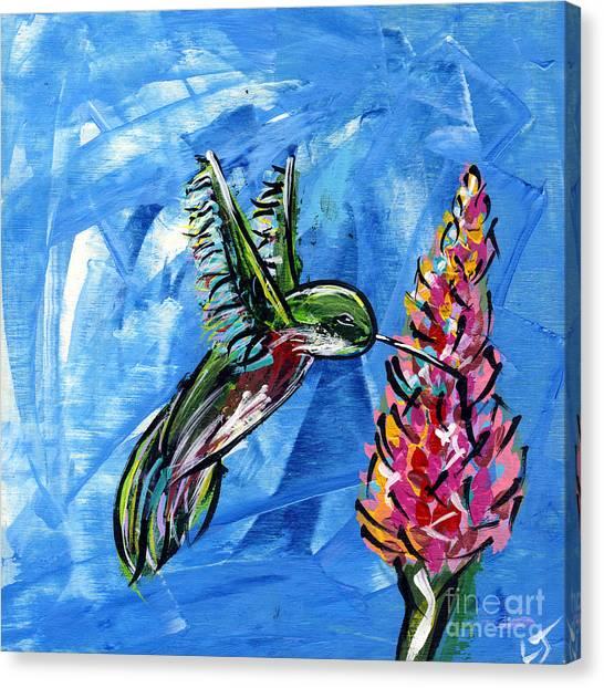 Midnite Canvas Print - Hummingbird IIi by Lovejoy