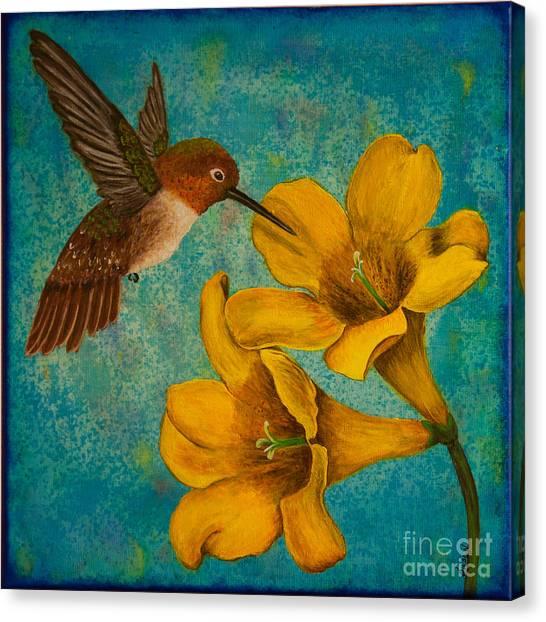 Hummingbird With Yellow Jasmine Canvas Print