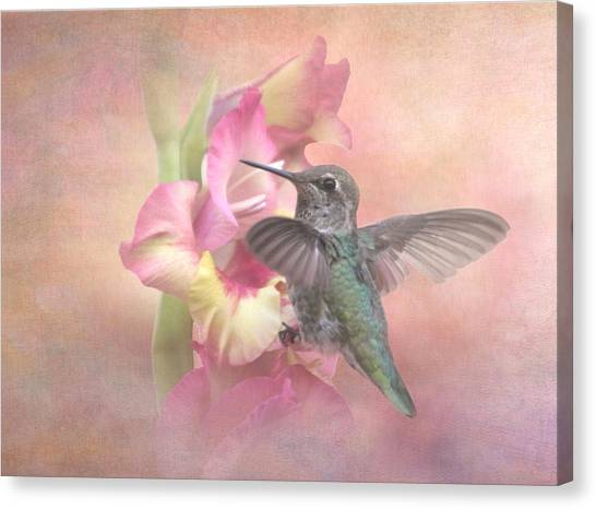 Gladiolas Canvas Print - Hummingbirds Gladiola by Angie Vogel