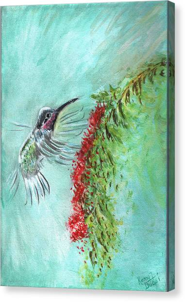 Hummingbird Bird Canvas Print by Remy Francis