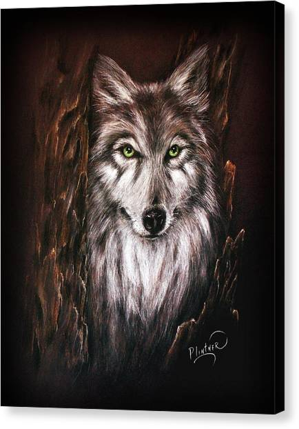 Hunter In The Night Canvas Print