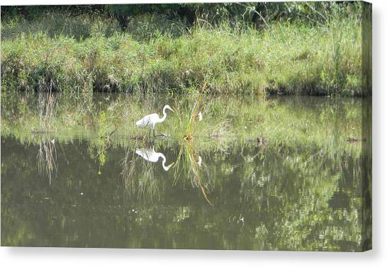 Hunter Reflected 1 Canvas Print
