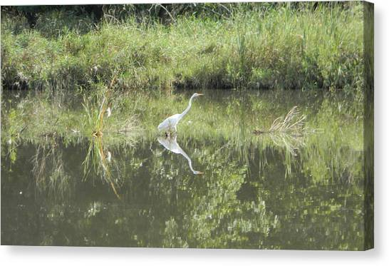 Hunter Reflected 2 Canvas Print