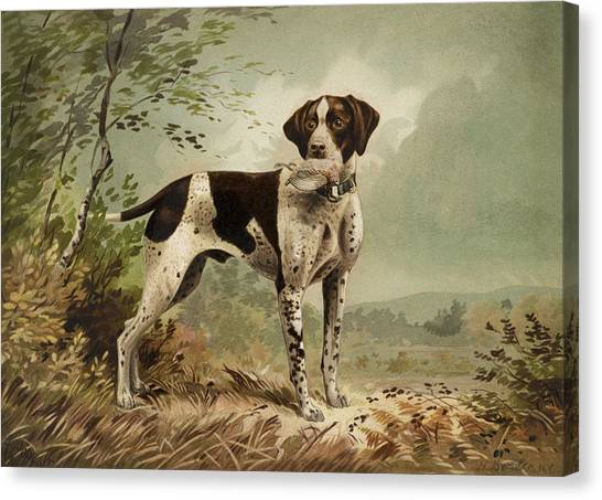 Purebred Canvas Print - Hunting Dog Circa 1879 by Aged Pixel
