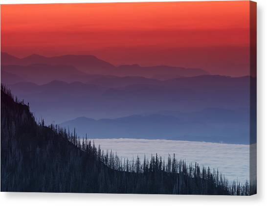 Cloud Forests Canvas Print - Hurricane Ridge Sunset by Mark Kiver