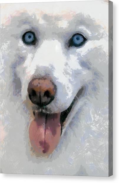 Husky Canvas Print by Georgi Dimitrov