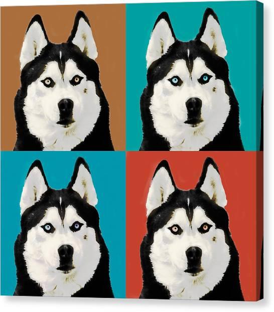 Huskie Canvas Print - Husky Pop Art by Susan Stone