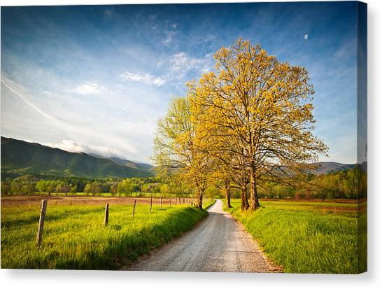 Hyatt Lane Cade's Cove Great Smoky Mountains National Park Canvas Print