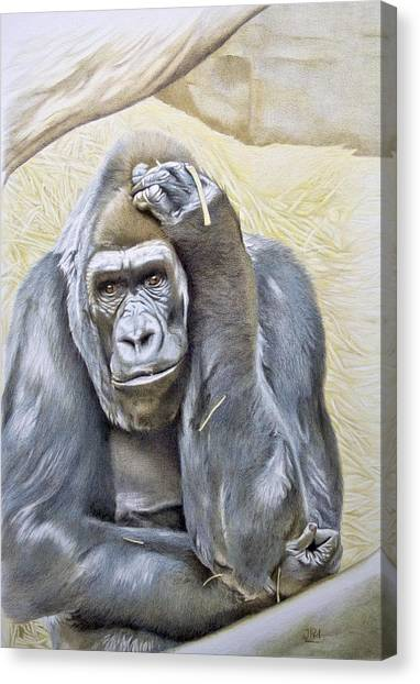 Canvas Print - I Am In Big Trouble by Jill Parry