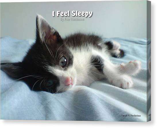 I Feel Sleepy Canvas Print