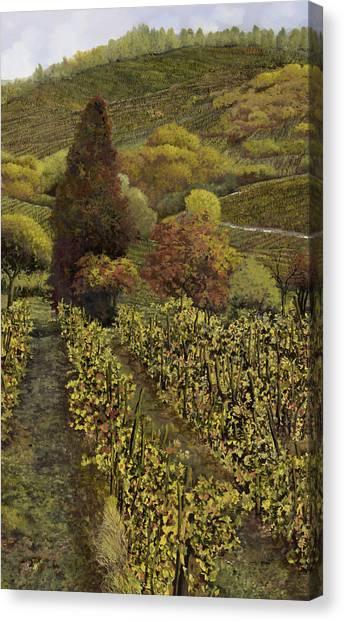 Vineyard Canvas Print - I Filari In Autunno by Guido Borelli