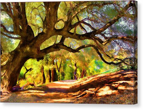I Gave My Word To This Tree Canvas Print