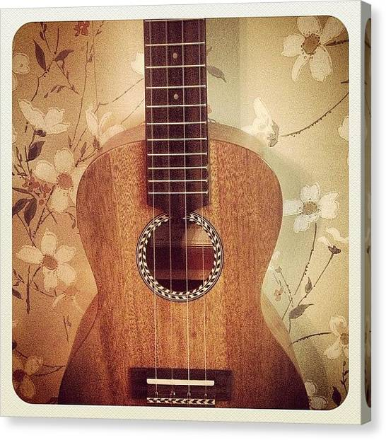 Ukuleles Canvas Print - I Has Ukulele. #ukulele #music by Berlin Green