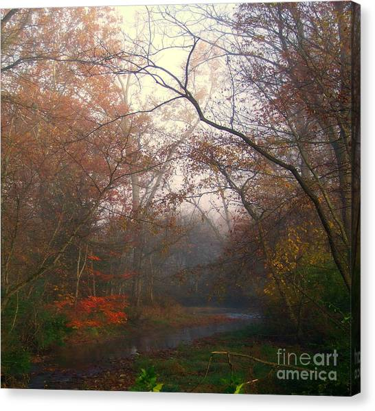 I Have Color Canvas Print