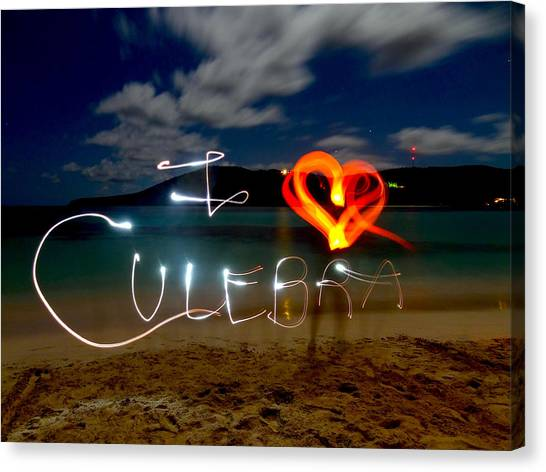Flamenco Canvas Print - I Love Culebra by Motion Me