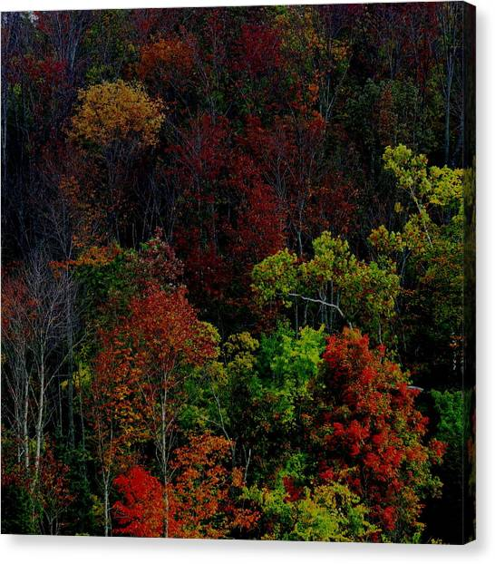 I Love October Canvas Print
