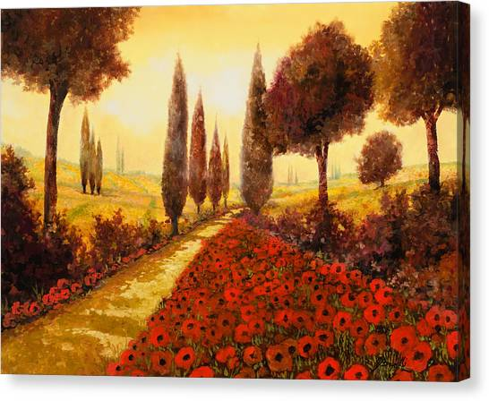 Cypress Canvas Print - I Papaveri In Estate by Guido Borelli