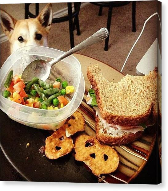 Sandwich Canvas Print - I Sense A Predator Near My #food by Tiffani Alvarez