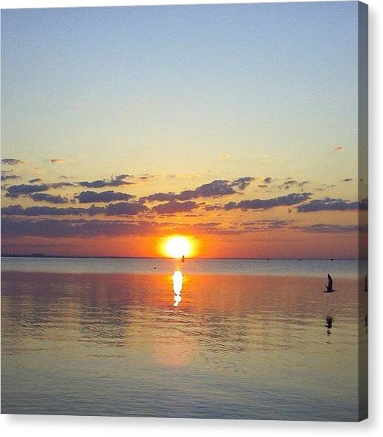 Dolphins Canvas Print - I Took This Photo In 2007 In Feodosia by Alexandr Minaev