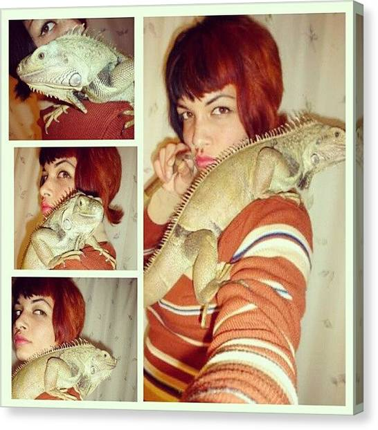 Iguanas Canvas Print - I Wanna 'nother Iguanaaaa #iguana by Melissa Eve