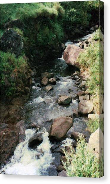 Rocky Stream In Iao Valley Canvas Print