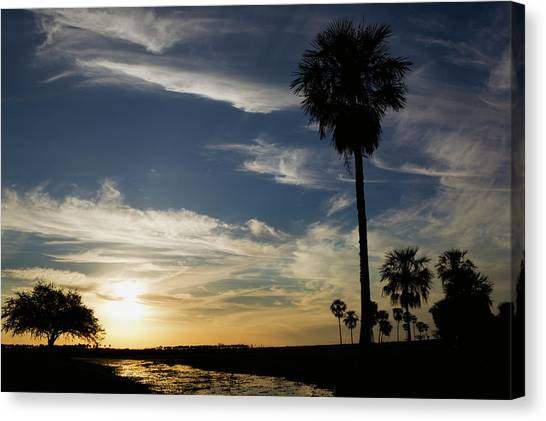 Palm Trees Sunsets Canvas Print - Ibera Marshes, Sunset by Ken Archer