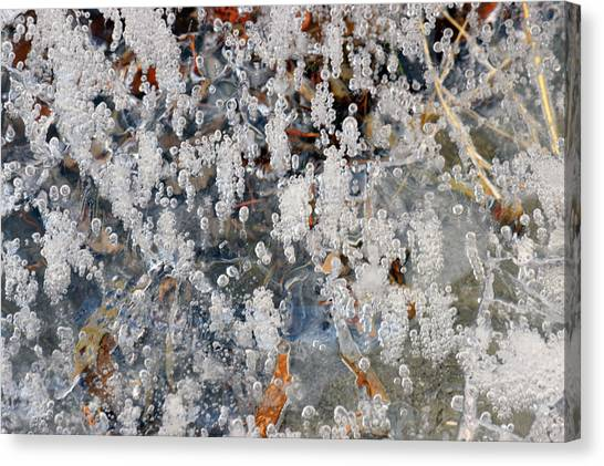 Ice Bubbles  Canvas Print