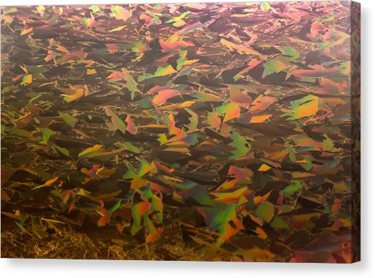 Red Camo Canvas Print - Ice Camo by Shane Bechler