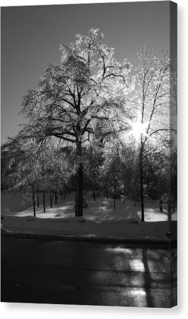 Ice Cold Sun Canvas Print by Maude Demers