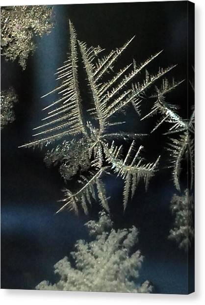 Ice Crystals Canvas Print