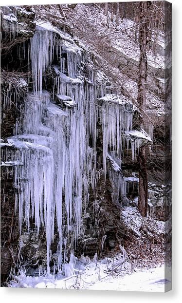 Ice I Canvas Print