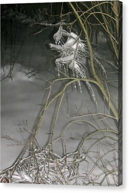 Ice Imp Canvas Print by Azthet Photography