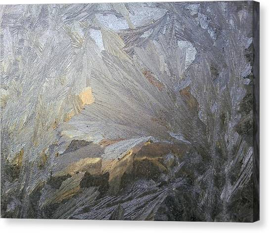 Ice Lily Canvas Print by Jaime Neo