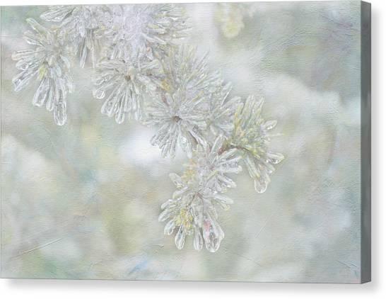 Ice Needles Canvas Print