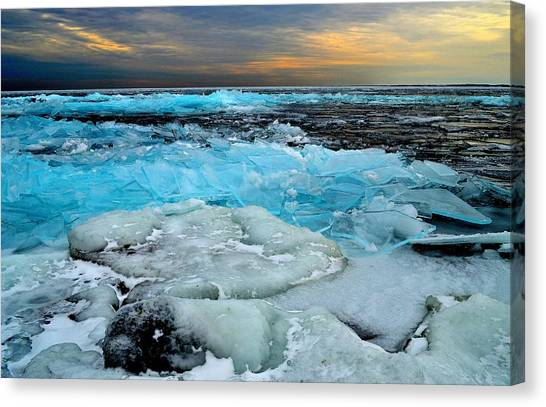 Frozen Beauty In Extreme Canvas Print