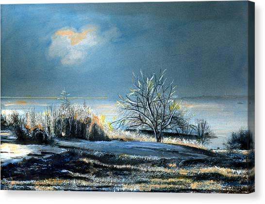 Ice Storm Coast Of Maine Canvas Print
