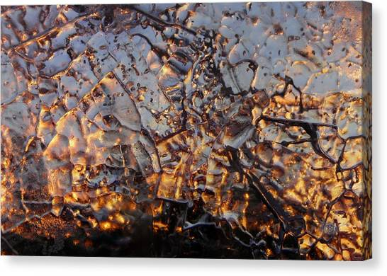Ice Web Canvas Print