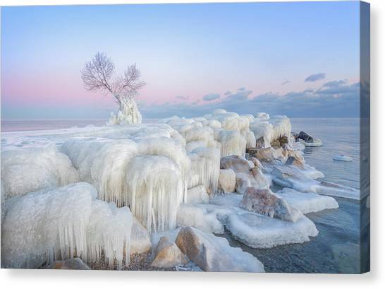Frost Canvas Print - Ice Wonderland by Larry Deng