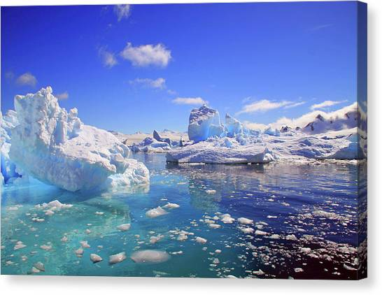 Antarctica Canvas Print - Icebergs And Ice Flows by Miva Stock