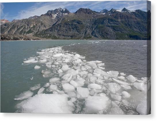 Margerie Glacier Canvas Print - Icebergs, Glacier Bay National Park by WorldFoto