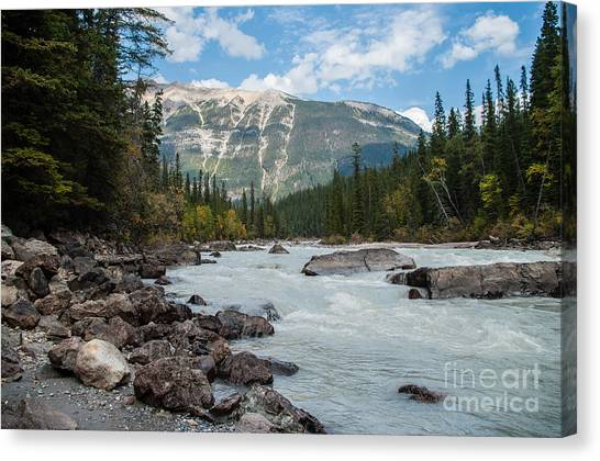 Icefields Parkway 2.0640 Canvas Print by Stephen Parker