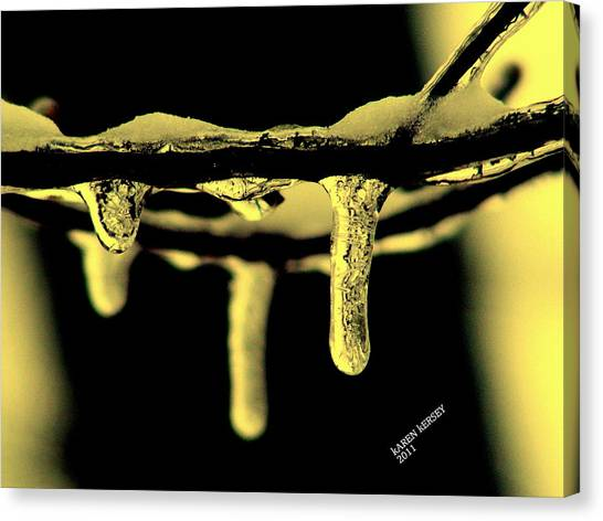 Icey Branches Canvas Print