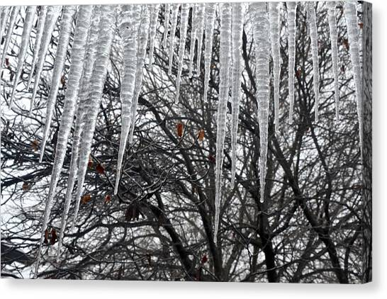Icycles On The Eave Canvas Print