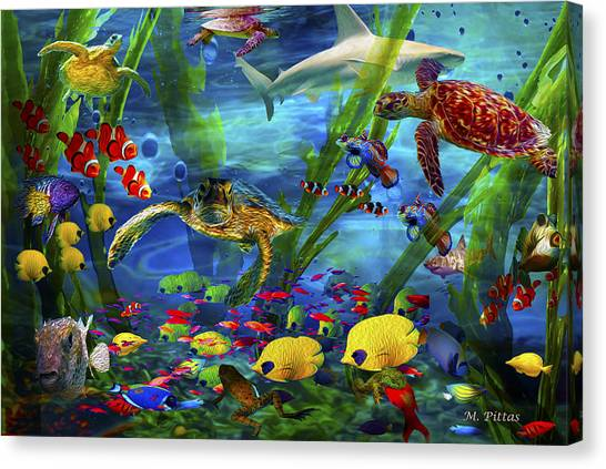 I'd Like To Be Under The Sea...... Canvas Print