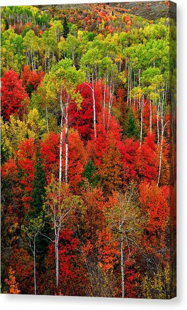 Idaho Autumn Canvas Print