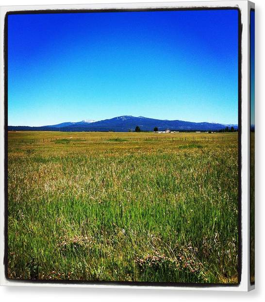 Dirt Road Canvas Print - Idaho Horizon by Meghan at FireBonnet Art
