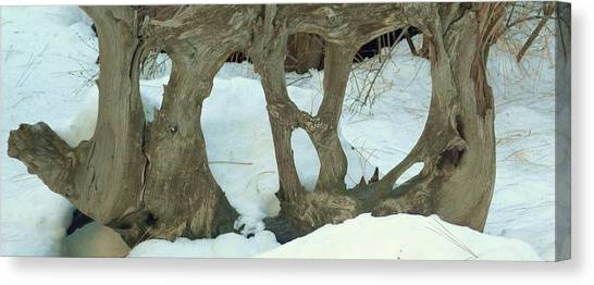 Idyllwild Tree Sculpture Canvas Print